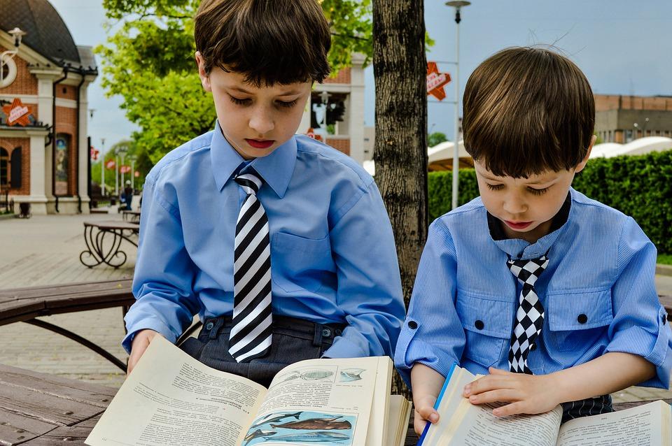 dwóch chłopców widocznych od przodu czyta podręczniki